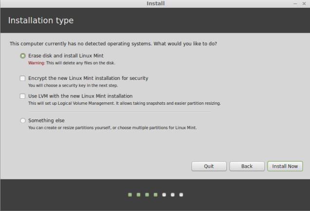 linuxmint-installation-type